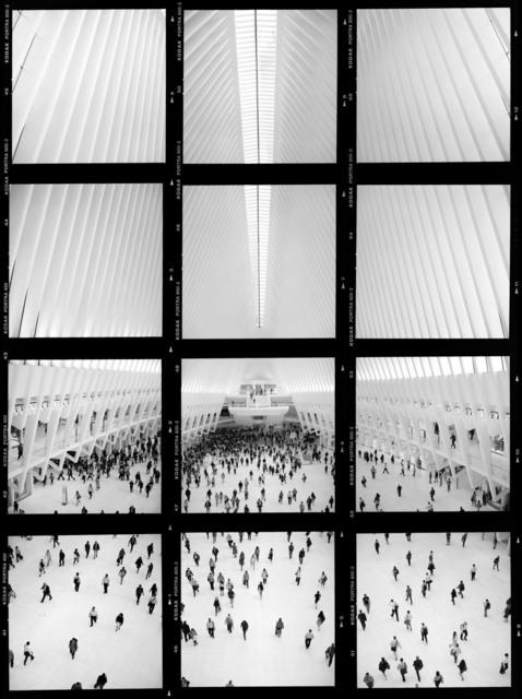 William Furniss, 'Oculus', 2017, Van Rensburg Galleries