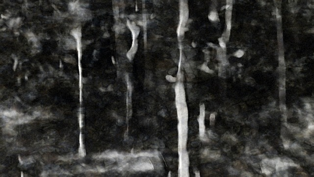 , 'Breathing Charcoal Soaked in a Shallow Forest Sream,' 2010, Gallery Ske