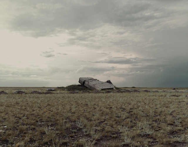 , 'The Polygon Nuclear Test Site VII, Kazakhstan,' 2011, Flowers