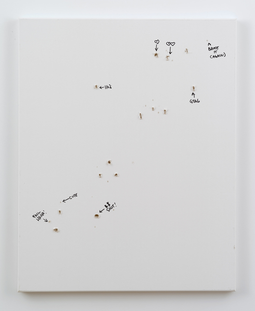 , 'Liberator Test Rounds 2,' 2013, bitforms gallery