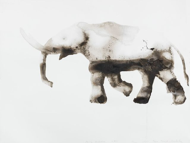 , 'American Mastodon Mammut americanum (Tighe Triangle, Manhattan),' 2015, Salon 94