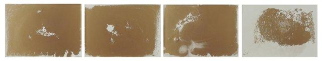 , 'Goldfish,' 2014, Proyecto H Contemporaneo