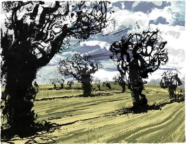 , 'Wild Trees (5/60),' , Water Street Gallery