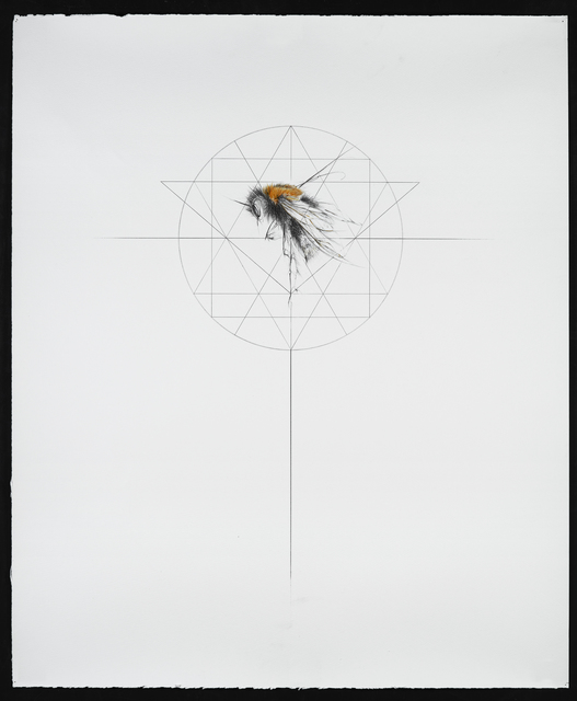 , 'Tree Bumble Bee,' 2016, Lawrence Alkin Gallery