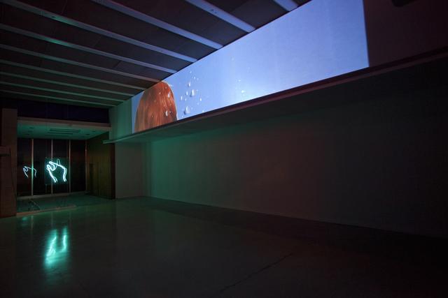 , 'Velvet Peel 1,' 2015, Simon Preston Gallery