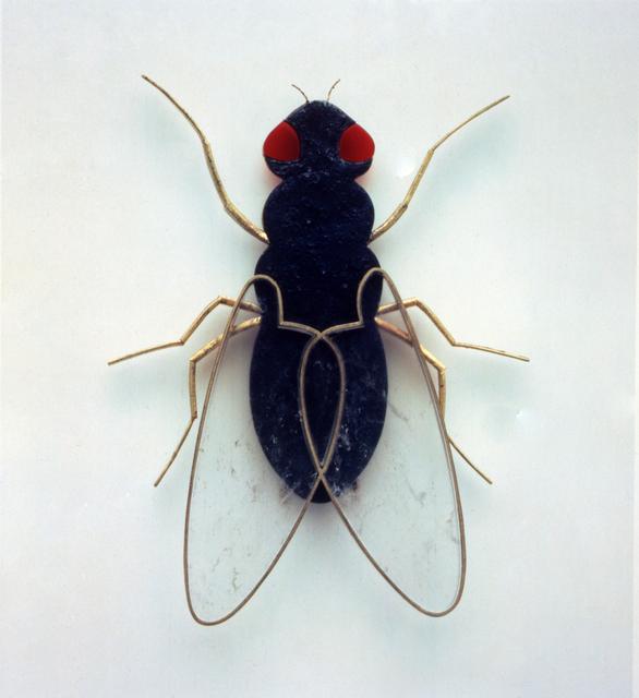 , 'Spilla Musca Domestica,' 1995, Ornamentum