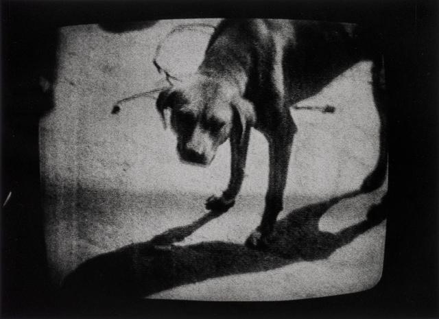 Daido Moriyama, 'New York City', 1972, Michael Hoppen Gallery