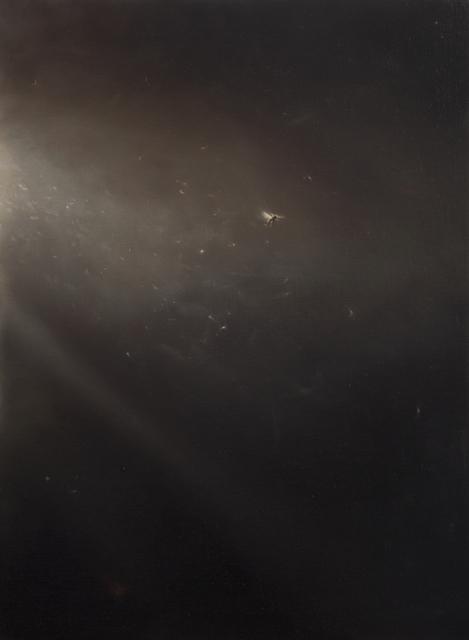 , 'Lazarus,' 2018, Gallery 1261