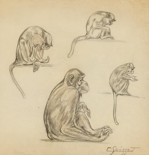 , 'Cercopithecus,' , Galerie Dumonteil