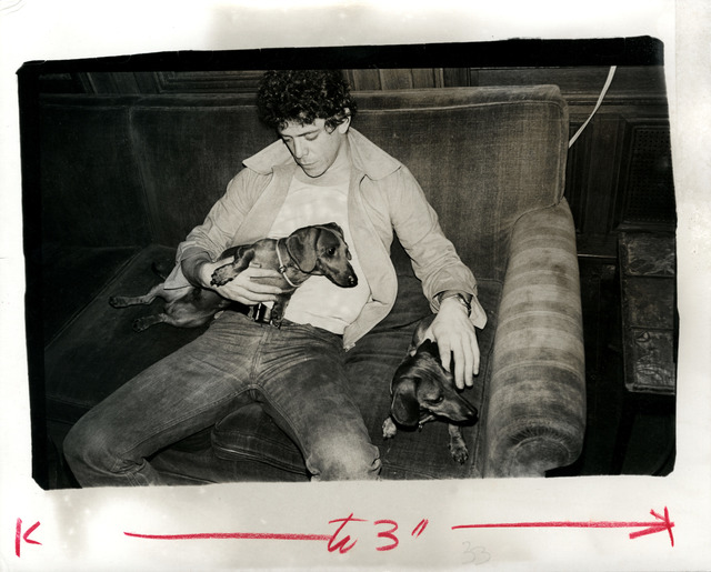 , 'Andy Warhol, Photograph of Lou Reed with Archie, circa 1976,' ca. 1976, Hedges Projects
