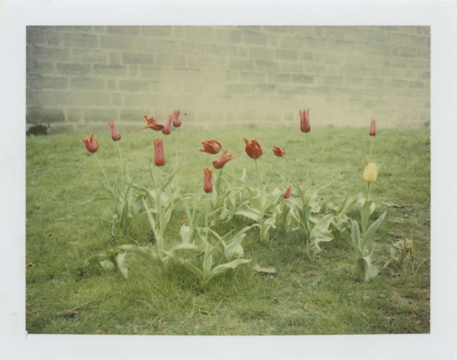 Stefanie Schneider, 'Springtime (Paris)', 1995, Photography, Analog C-Print based on a Polaroid, hand-printed by the artist on Fuji Crystal Archive Paper. Not mounted., Instantdreams