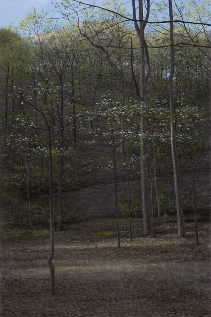 Jeff Aeling, 'Dogwoods', 2019, Gallery Victor Armendariz