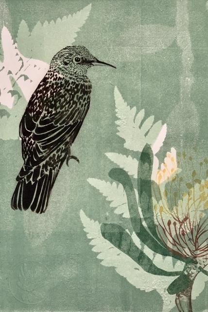 Trudy Rice, 'Baby Wattle bird and Waratah flower', 2019, MELBOURNE STUDIOS #trudyrice & #lisasewards
