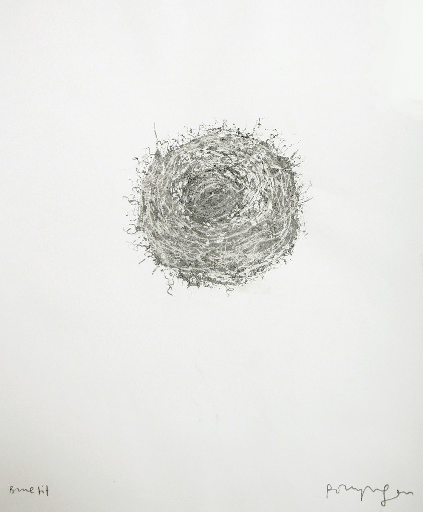 Polly Morgan - Blue Tit, 2012 (nest). Photo courtesy of the artist.