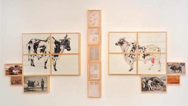 , 'Bull/Bullock,' 2015, Gallery Espace