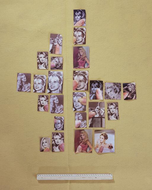 , 'Encyclopedia Grid (Bardot),' 2014, Foxy Production