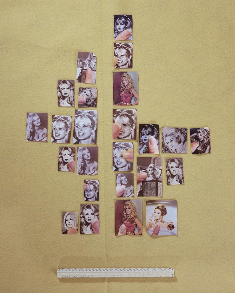 Encyclopedia Grid (Bardot)