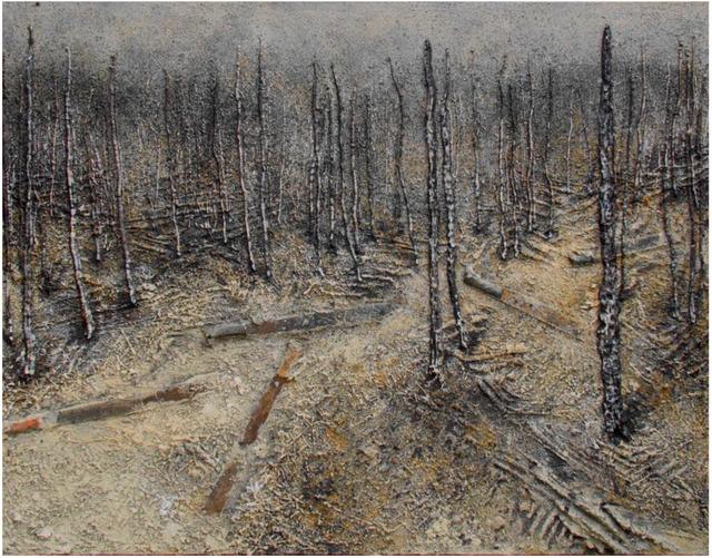 , 'Amazon 101,' 2012, Alvarez Gallery