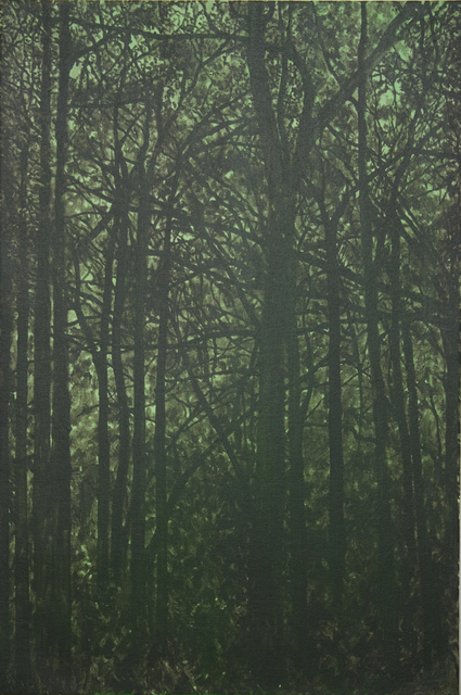 , 'Untitled (Forest),' 2014, Amos Eno Gallery