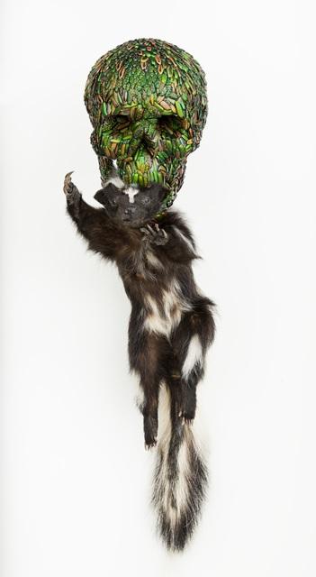 , 'Skull with skunk,' 2013, Deweer Gallery