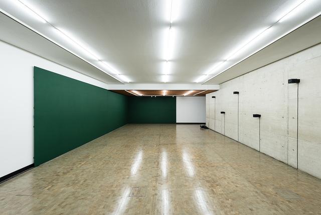 , 'Auditory Scene / DPOAE Divisor,' 2017, Kunsthalle Wien