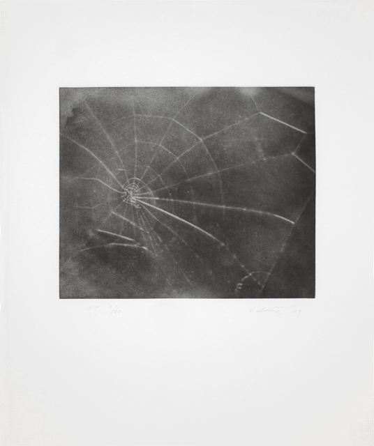 Vija Celmins, 'Web #5', 2009, Betsy Senior Fine Art