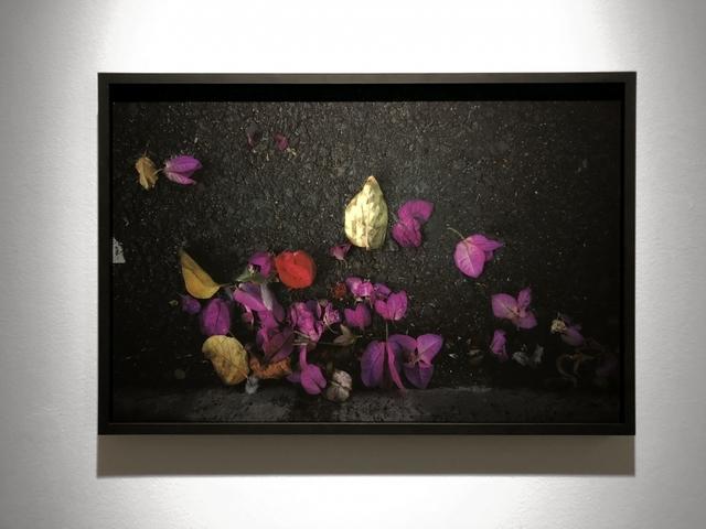 Giovanni Ozzola, 'Diciannove Gennaio', 2018, Photography, Giclée print on cotton paper, Dibond, framed, GALLERIA CONTINUA