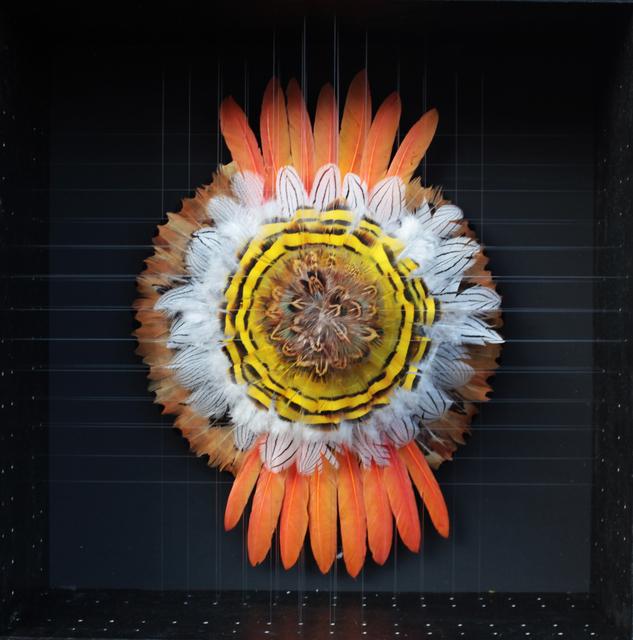 , 'Oeil de Mandala VI,' 2016, [Perpitch et Bringand]