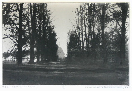 , 'The Lime Avenue at Ditchley,' 2007, Eames Fine Art