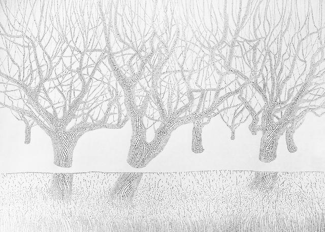 , 'Interactive landscape,' 2015, N2 Galería