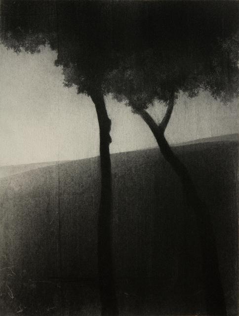 , 'Yllea XIII,' , MA arte contemporáneo