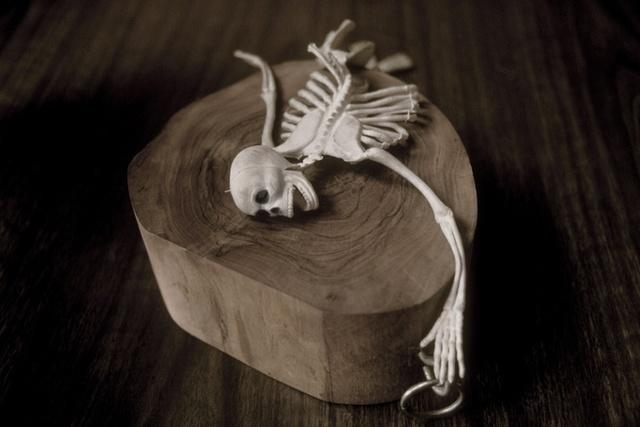 , 'The Final Project [Small skeleton 5],' 1991-1992, Richard Saltoun