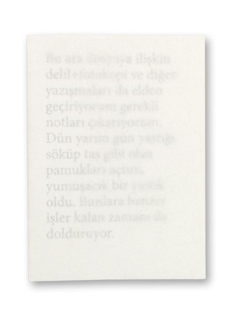 BOOKLAB, 'Sevgi Ortaç - MANZARALI EV', 2014, Contemporary Istanbul Editions