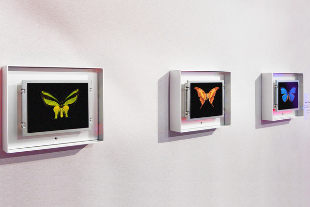 , 'Baby Flutter,' 2012, Priveekollektie Contemporary Art | Design