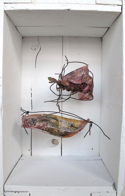 , 'Fish Mutations (Plesiopidae),' 2013, Julia Colavita