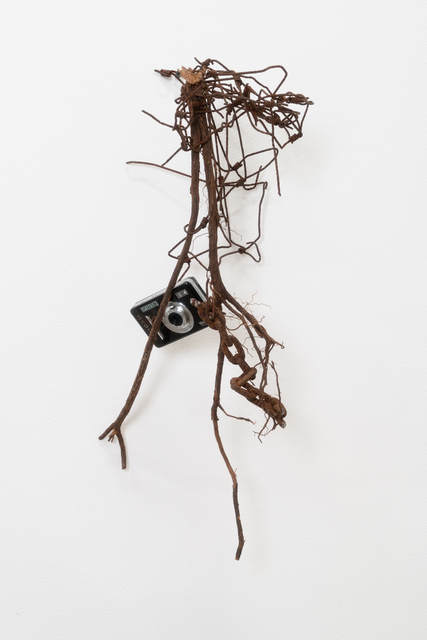 , 'Camera On My Root,' 2017, James Fuentes