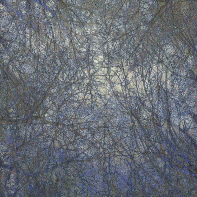 Gwen Laine, 'Topography Series (#18)', 2015, Michael Warren Contemporary