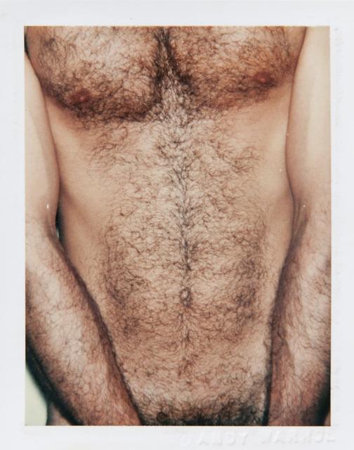 Andy Warhol, 'Sex Parts & Torsos', 1977, Artsnap