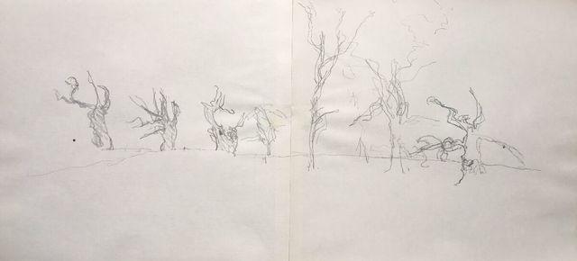 Michael Andrews, 'Winter Trees, Grimsthorpe Castle, Christmas', 1990, James Hyman Gallery