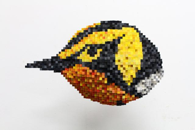 , 'Blackburnian Warbler,' 2015, Mark Hachem Gallery