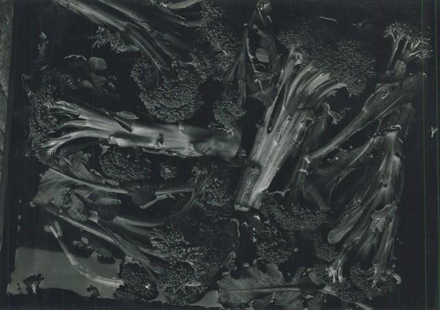 Ron Stark, 'Untitled (Still Life with Broccoli)', 1972, Washington Color