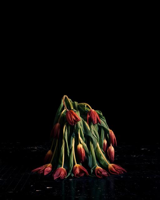 , 'Flowers V,' 2010, CHRISTOPHE GUYE GALERIE
