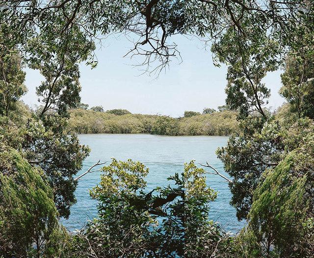 , 'Bush Landscape #5 ,' 2016, OLSEN GALLERY