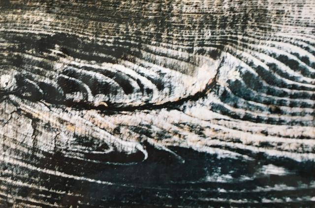 , 'Untitled,' 2001, Casa Nova Arte e Cultura Contemporanea