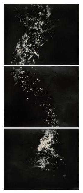 , 'Hydra Tiptrych ,' 2013, photo-eye Gallery