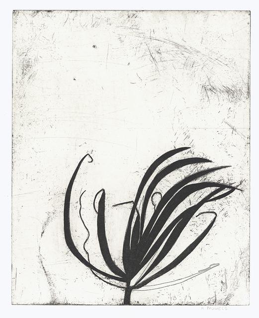 Nora Pauwels, 'Marie's Plant', 2018, Kala Art Institute
