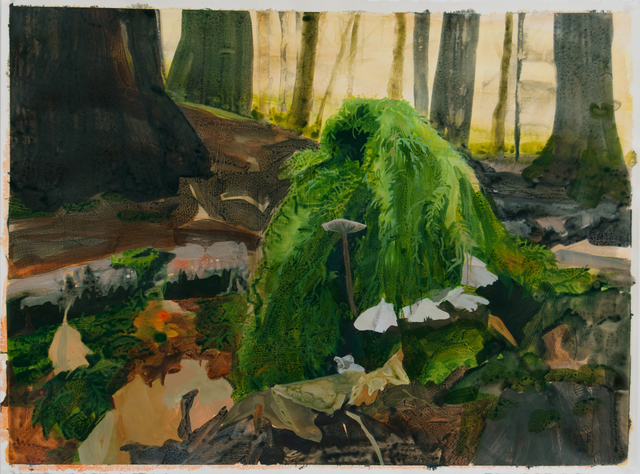, 'Forest Floor with Moss and Fungi,' 2016, Inman Gallery