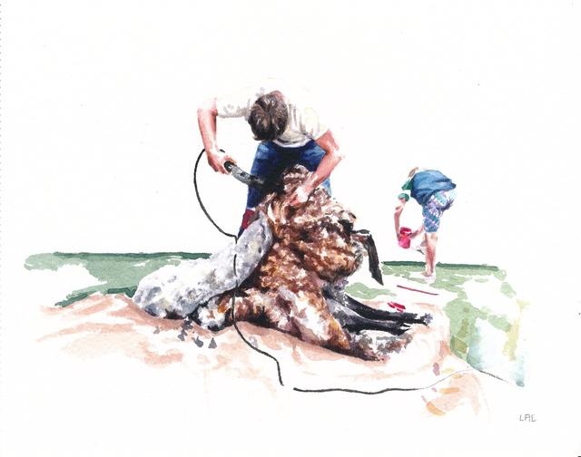 , 'Sheep Shearing Day,' , The Southern