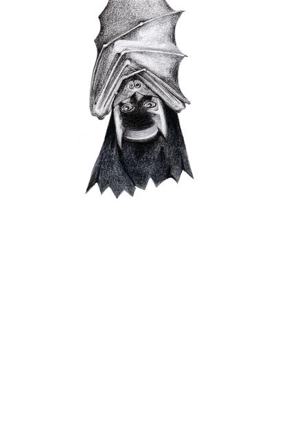 , 'I Am The Batman,' 2014, Rebecca Hossack Art Gallery
