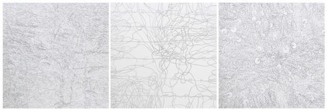 , 'Camouflage-Thorns-Lotus, Triptych,' 2016, Saskia Fernando Gallery